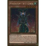 MVP1-FRG16 Magicienne des Kiwis Gold Rare