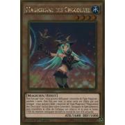 MVP1-FRG52 Magicienne des Chocolats Gold Rare