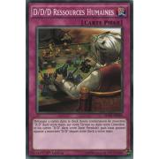 SDPD-FR034 D/D/D Ressources Humaines Commune