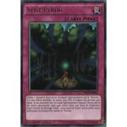 RATE-FR068 Vent Perdu Rare