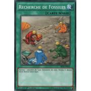 SR04-FR022 Recherche de Fossiles Commune