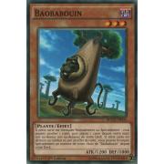 MACR-FR034 Baobabouin Commune
