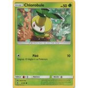 SL02_4/145 Chlorobule Commune