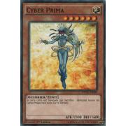 DPDG-FR009 Cyber Prima Commune