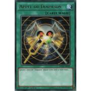 DPDG-FR029 Appel du Diapason Rare
