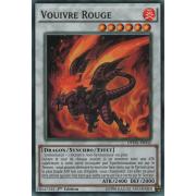 DPDG-FR032 Vouivre Rouge Commune