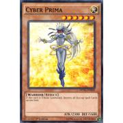 DPDG-EN009 Cyber Prima Commune