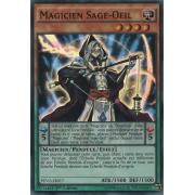 PEVO-FR017 Magicien Sage-Oeil Super Rare