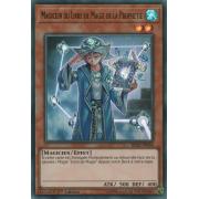BLLR-FR050 Magicien du Livre de Magie de la Prophétie Ultra Rare