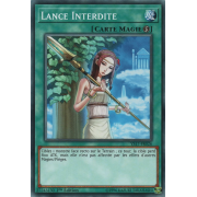 YS17-FR026 Lance Interdite Commune