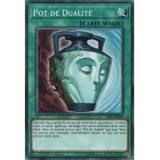 YS17-FR028 Pot de Dualité Commune