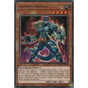 COTD-FR010 Suprex Gouki Rare