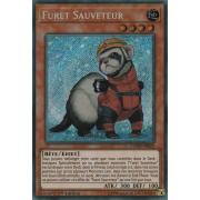COTD-FR029 Furet Sauveteur Secret Rare