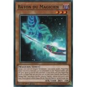 LEDD-FRA05 Bâton du Magicien Commune