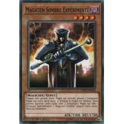 LEDD-FRA06 Magicien Sombre Expérimenté Commune