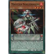 LEDD-FRC11 Magicien Nobledragon Commune