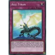 LEDD-FRA33 Aile Tyran Commune