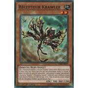 CIBR-FR019 Récepteur Krawler Commune