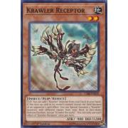 CIBR-EN019 Krawler Receptor Commune