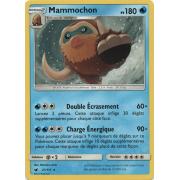 SL04_21/111 Mammochon Rare