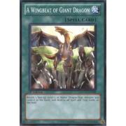 SDDC-EN028 A Wingbeat of Giant Dragon Commune
