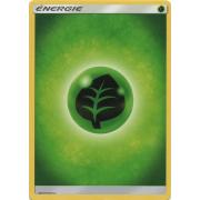 SL04_125/111 Énergie Plante Commune