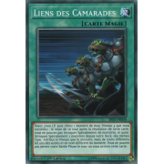 SR05-FR030 Liens des Camarades Commune