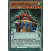 EXFO-FR000 Esprit Sumo Yoko-Zuna Commune