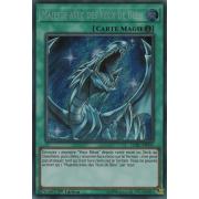 LCKC-FR031 Majesté avec des Yeux de Bleu Secret Rare