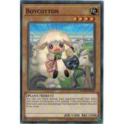 FLOD-EN035 Boycotton Short Print
