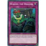 FLOD-EN080 Waking the Dragon Short Print
