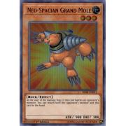BLRR-EN051 Neo-Spacian Grand Mole Ultra Rare