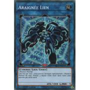 YS18-FR044 Araignée Lien Commune