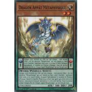 CYHO-FR018 Dragon Appât Métaphysique Commune