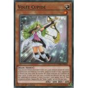 CYHO-FR024 Volée Cupide Short Print