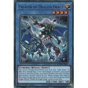 CYHO-FR031 Paladin du Dragon Orage Rare
