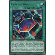 CYHO-FR051 Cynet Rituel Rare
