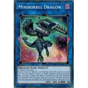 CYHO-EN040 Miniborrel Dragon Commune