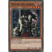 SDPL-FR013 Maître des Crânes Commune