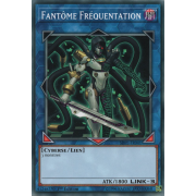 SDPL-FR041 Fantôme Fréquentation Commune