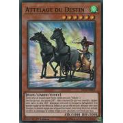 SHVA-FR005 Attelage du Destin Super Rare