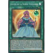 SHVA-FR009 Guide de la Norne Verdande Super Rare