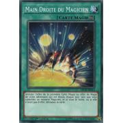 MP18-FR012 Main Droite du Magicien Commune