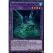 CT15-EN005 Mudragon of the Swamp Ultra Rare