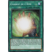 LEHD-FRB20 Charge de l'Âme Commune