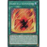 SOFU-FR053 Volonté de la Salamangrande Commune