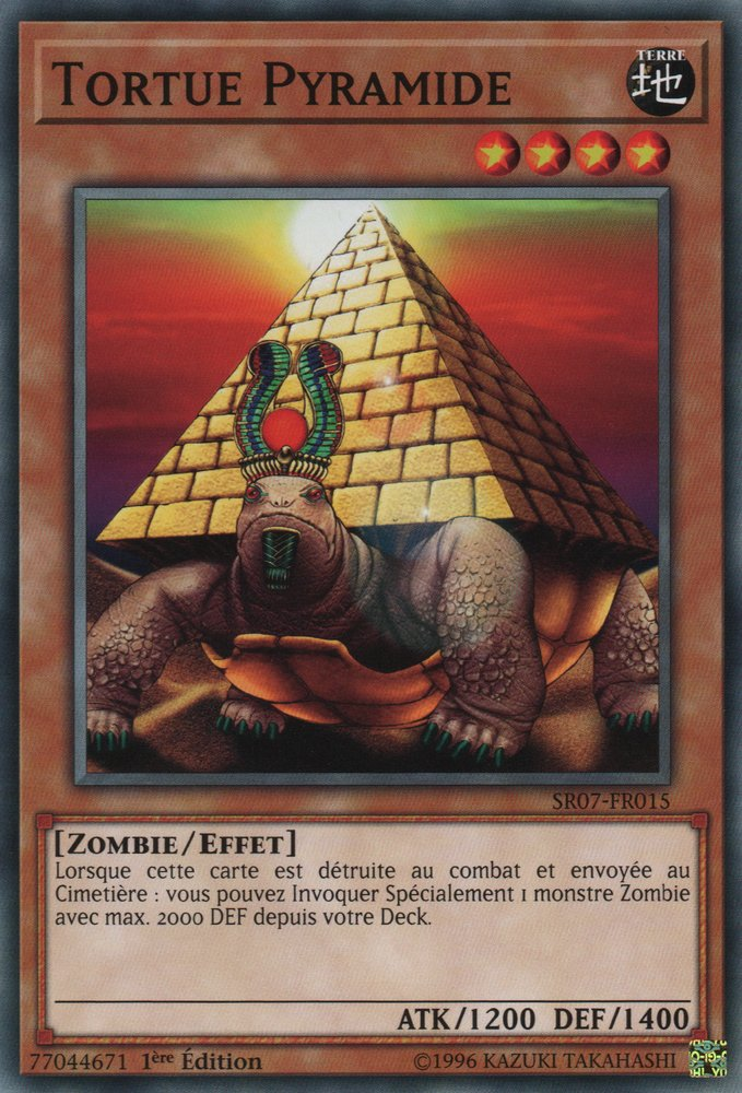 SR07-FR015 Tortue Pyramide Commune