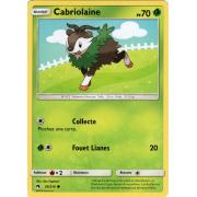 SL08_35/214 Cabriolaine Commune