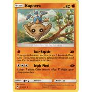 SL08_113/214 Kapoera Peu commune