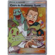 SL08_213/214 Cours du Professeur Orme Full Art Ultra Rare